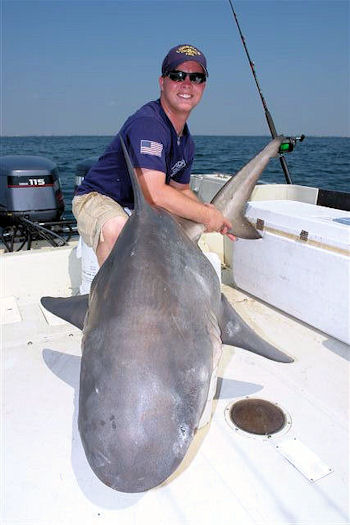 Galveston Sharking Fishing ....don't miss it!!